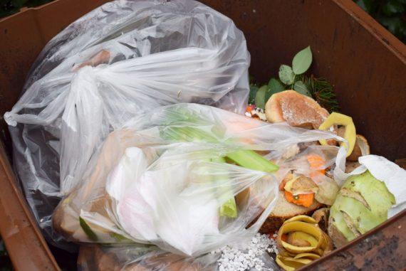 Bioabfälle und gefüllte Plastiktüten in Biotonne