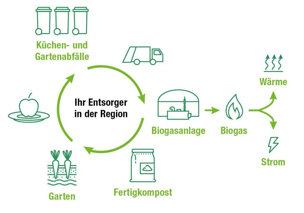 Infografik zum Bioabfall-Verwertungskreislauf