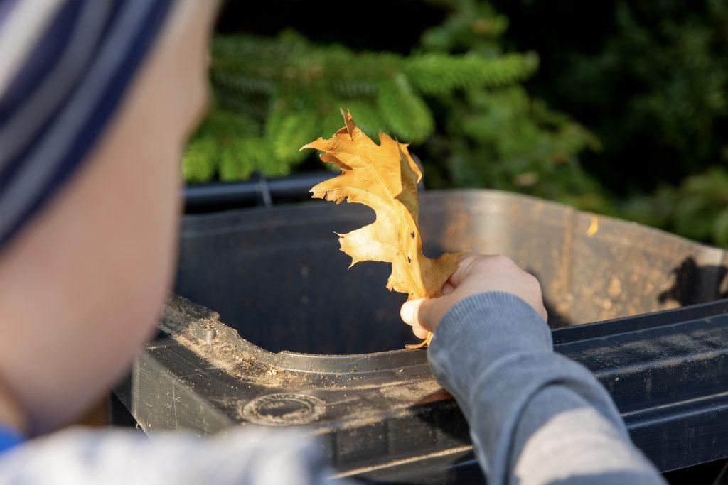 Kind mit trockenem Eichenblatt über Abfallbehälter