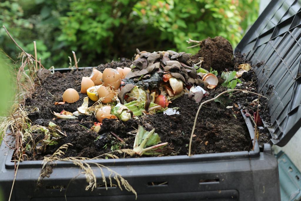 Behälter mit Bioabfällen auf Kompost