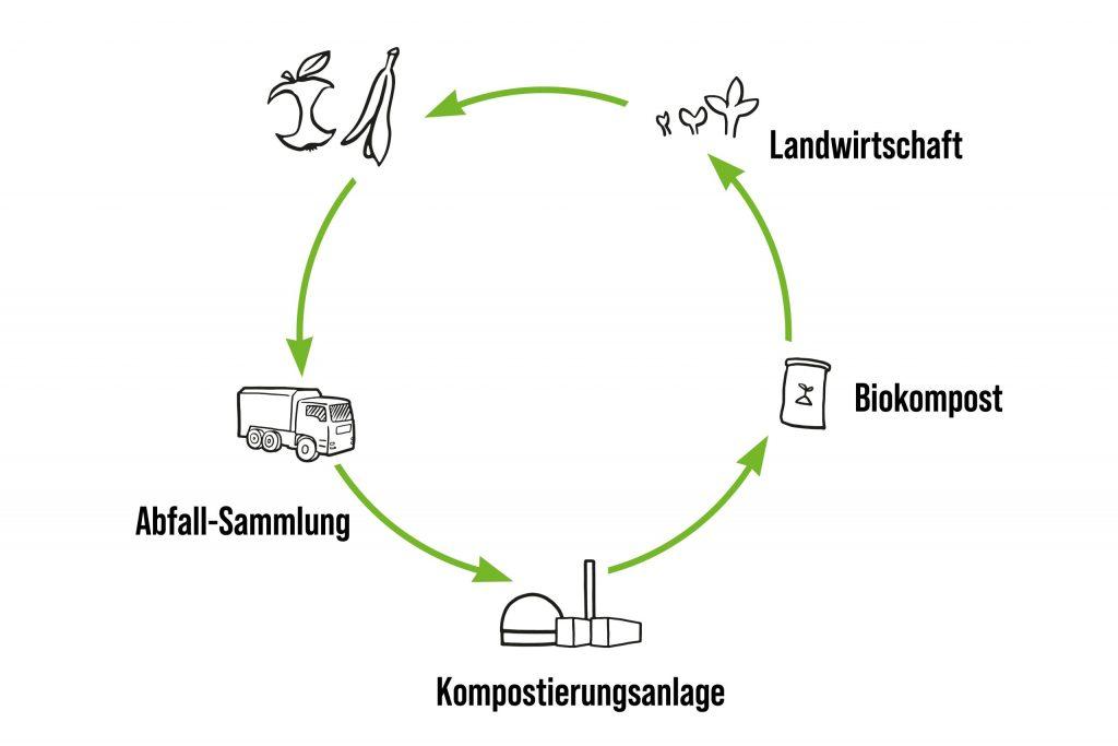 Gezeichnete Infografik zum Biomüll-Kreislauf