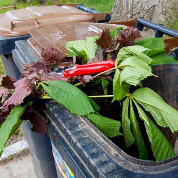 Grünabfälle und Gartenschere auf Tonnenrand