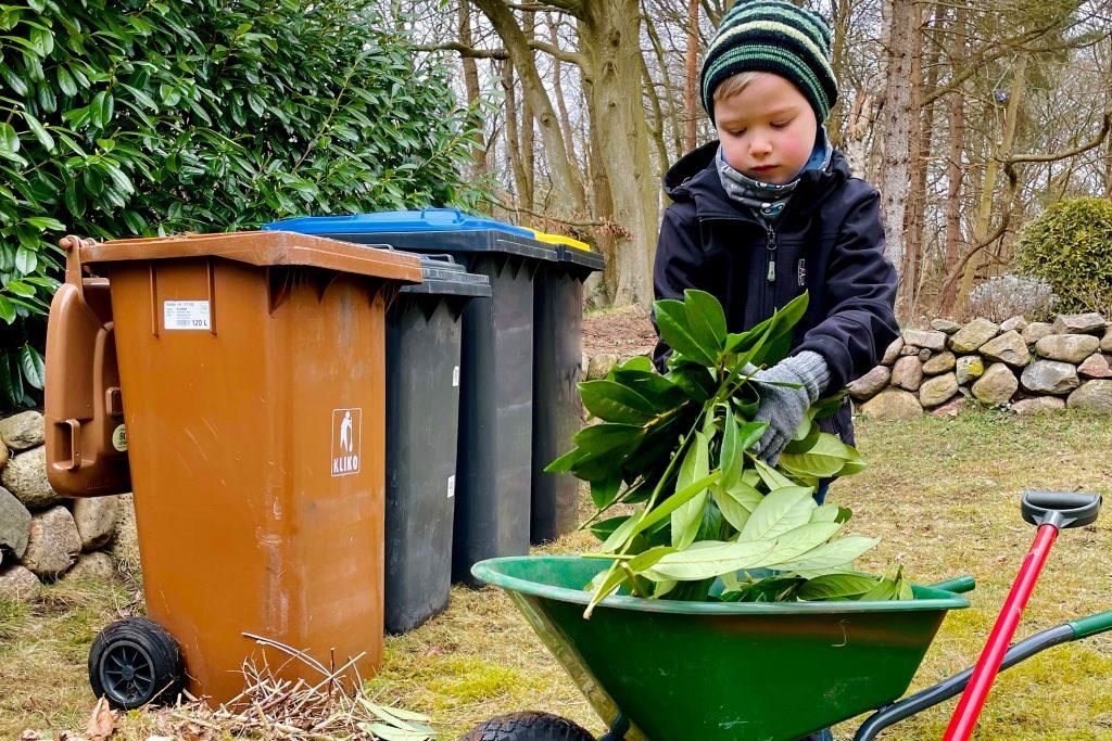 Junge greift Blätter aus Schubkarre