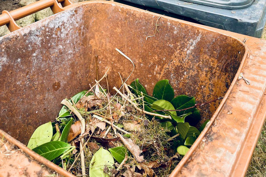 Geöffnete Biotonne mit Gartenabfällen